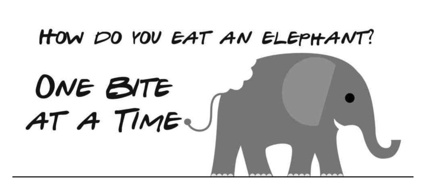 How do you eat an elephant? - Third Sector Lab